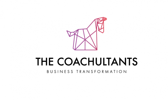 THE COACHULTANS