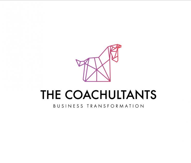 THE COACHULTANS